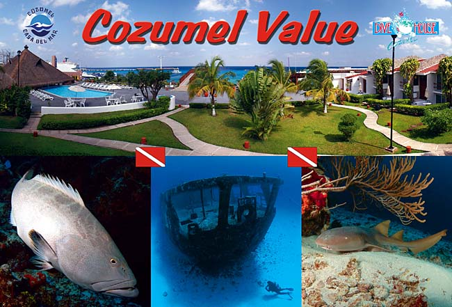 Casa del mar resort cozumel mexico scuba diving vacations dive travel packages - Cozumel dive packages ...