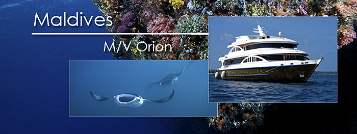 M/V Orion live-aboard in the Maldives Archipelago